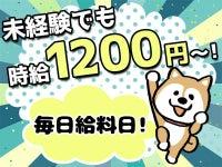 高時給1200円!